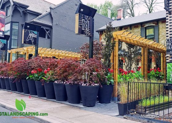 GTA-Landscaping-NAO-Steakhouse-90-avenue-rd.-natural-stone-patio