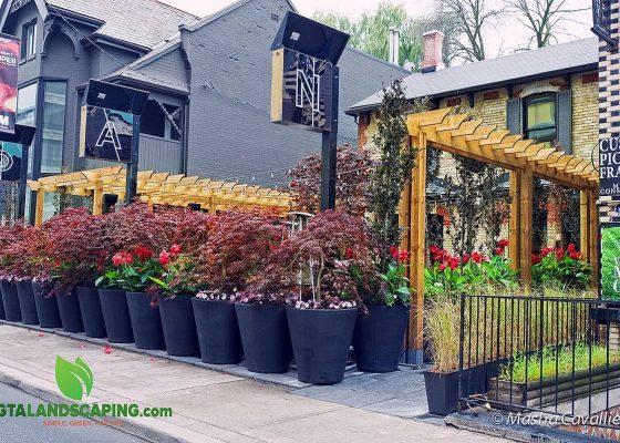 GTA-Landscaping-NAO-Steakhouse-restaurant-yorkville-90-avenue-rd.